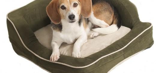 ColdHeat Pet Beds