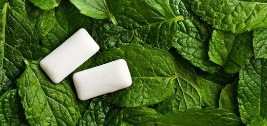 Xylitol gum mints