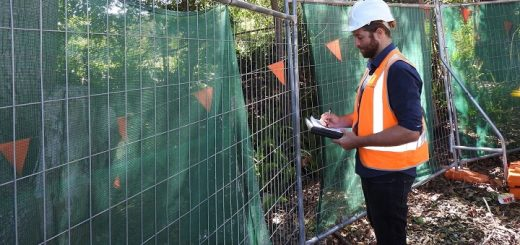 man writing a tree inspection report