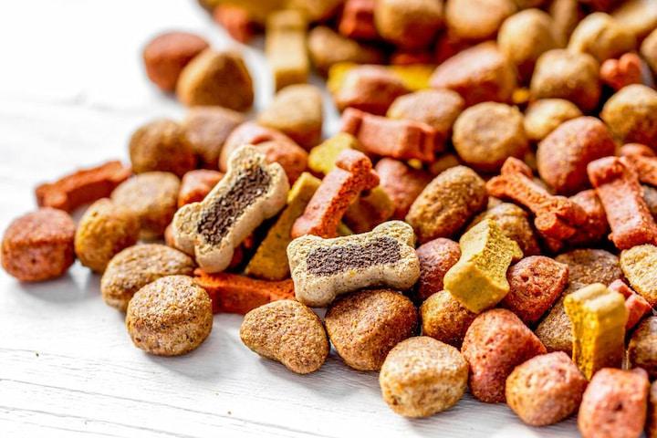 treats for dog